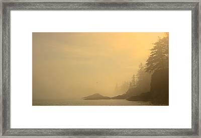 Fog And Sun Framed Print