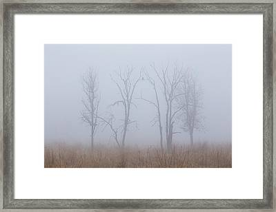 Fog Framed Print by Angie Vogel