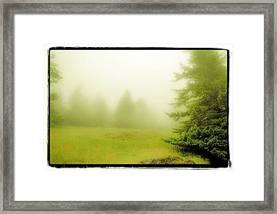 Framed Print featuring the photograph Fog Bank by Craig Perry-Ollila