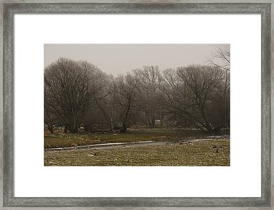 Fog Day Framed Print by BandC  Photography