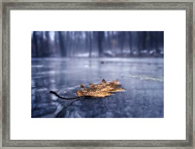 Fog Ice Leaf Framed Print