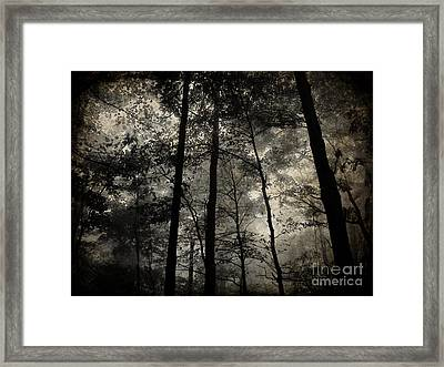 Fog In The Forest Framed Print by Lorraine Heath