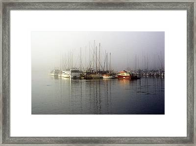 Fog Light In The Harbor Framed Print
