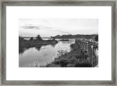Fog On The Bayou Black And White Framed Print