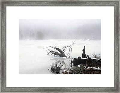 Fog On The Pond Framed Print by David Simons
