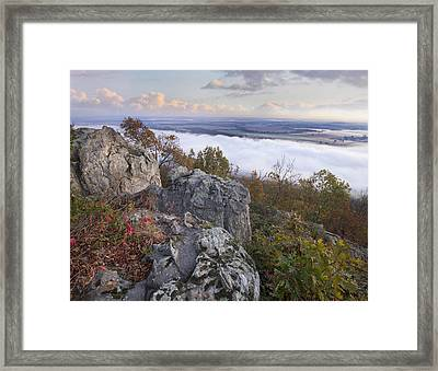 Fog Over Valley Petit Jean State Park Framed Print by Tim Fitzharris
