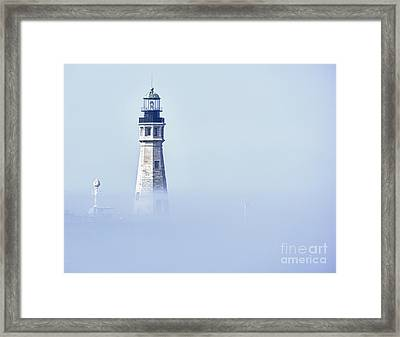 Fog Framed Print by Phil Pantano