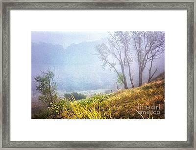Foggie Dune Colored Framed Print