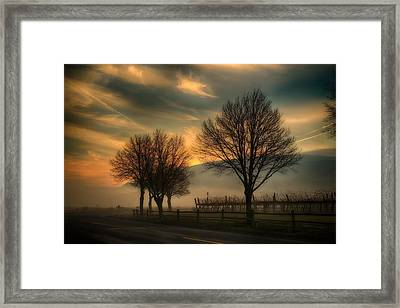 Foggy And Dreamy Framed Print by Lynn Hopwood
