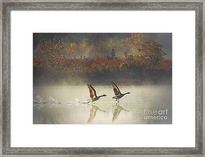 Foggy Autumn Morning Framed Print