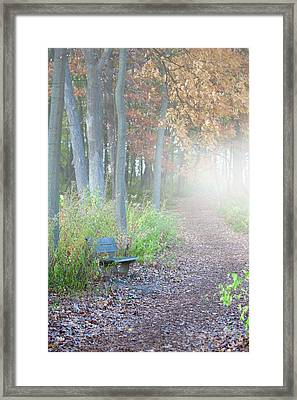 Foggy Autumn Morning Framed Print