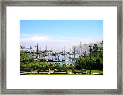 Foggy Camden Framed Print by Corinne Rhode