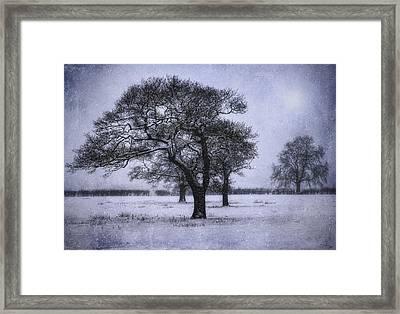 Foggy Christmas Eve Framed Print by Ian Mitchell