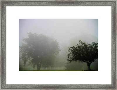 Foggy Country Landscape Framed Print by Dan Sproul
