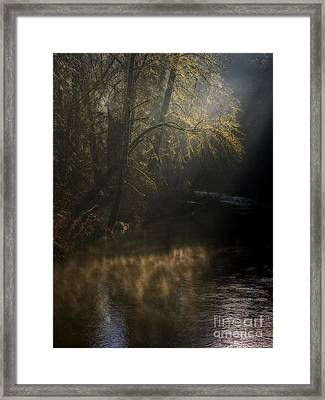 Framed Print featuring the photograph Foggy Creek by Inge Riis McDonald