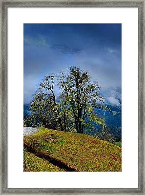 Foggy Day Framed Print by Donald Fink