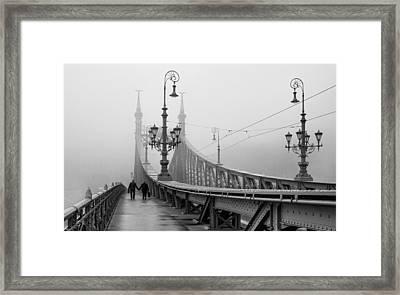 Foggy Day In Budapest Framed Print