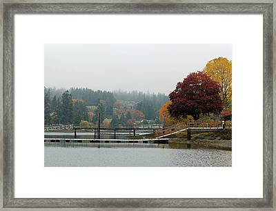Framed Print featuring the photograph Foggy Day In October by E Faithe Lester