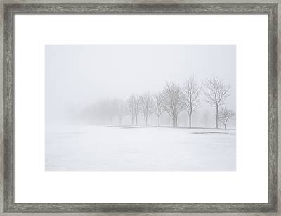 Foggy Day With Snow Framed Print by Donna Doherty