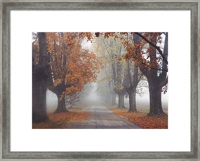 Foggy Driveway Framed Print by Wendell Thompson