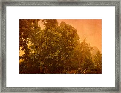 Foggy Drizzly City Morning Framed Print by Angela A Stanton