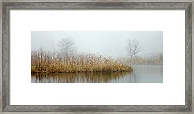 Foggy Duck Pond 1 Framed Print by James Blackwell JR