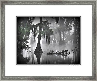 Foggy Egret Framed Print