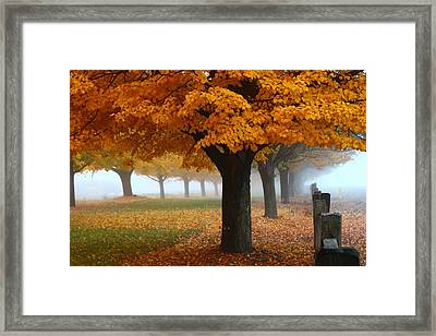 Foggy Fall Morning Framed Print by Lynn Hopwood