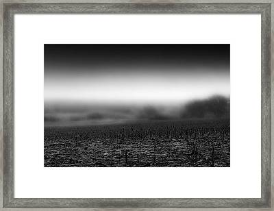 Foggy Field Framed Print by Tom Gort