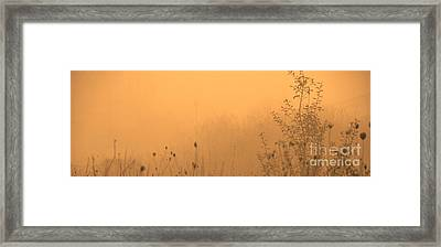 Foggy Fire Framed Print