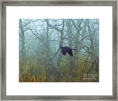 Foggy Flight Framed Print by Judy Wood