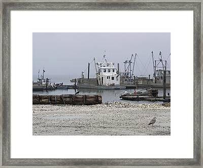 Foggy Harbor Framed Print by Pamela Patch