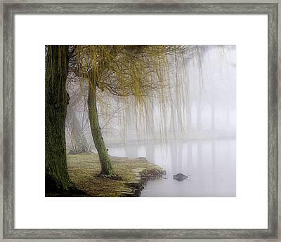 Foggy Lake Morning Framed Print by Vicki Jauron