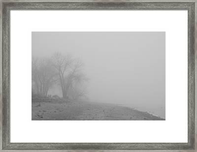 Foggy Lake Shoreline View Bw  Framed Print by James BO  Insogna