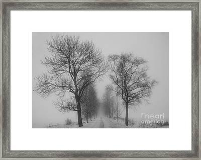 Foggy Lane Framed Print by Veikko Suikkanen