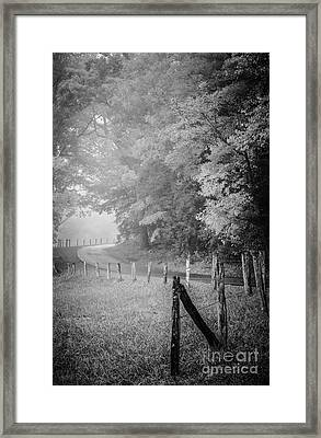 Foggy Loop Road Framed Print