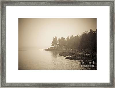 Foggy Maine Coast Framed Print by Diane Diederich