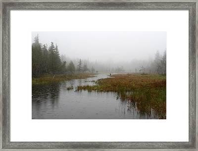 Foggy Marsh Near Jordan Pond Framed Print by Juergen Roth