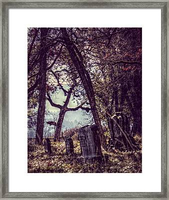 Framed Print featuring the photograph Foggy Memories by Melanie Lankford Photography