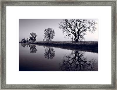 Foggy Morn Bw Framed Print by Steve Gadomski