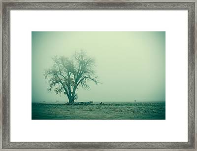 Foggy Morn Framed Print by Todd Klassy
