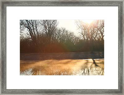 Framed Print featuring the photograph Foggy Morning by Alicia Knust