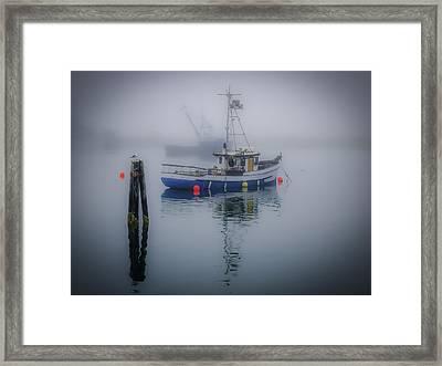 Foggy Morning At Rest Framed Print
