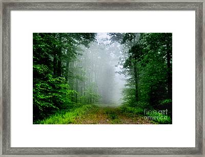 Foggy Morning Framed Print by Debra Fedchin