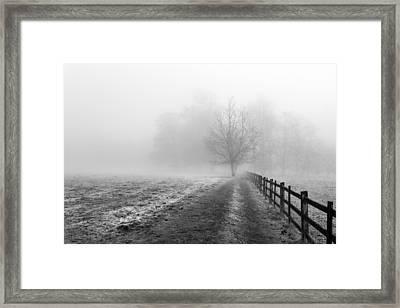 Foggy Morning. Framed Print