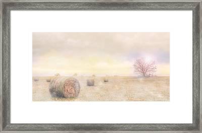Foggy Morning In Sc Framed Print