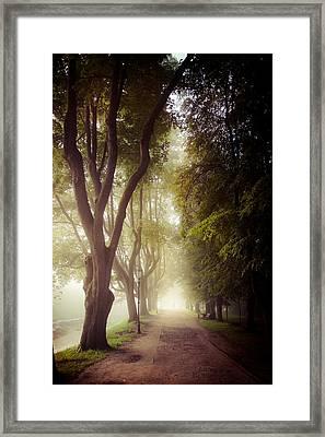 Foggy Morning In The Nesvizh Park Framed Print by Sviatlana Kandybovich