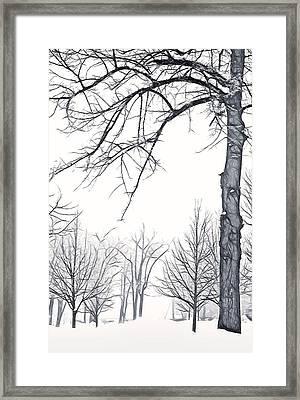 Foggy Morning Landscape - Fractalius 6 Framed Print by Steve Ohlsen