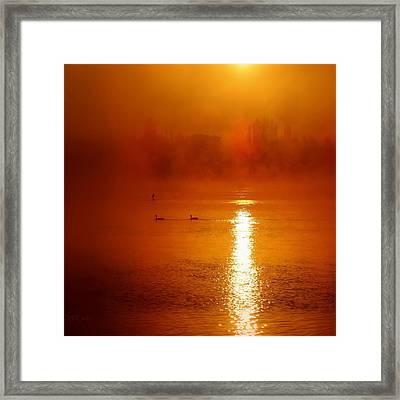 Foggy Morning On The River Framed Print by Nick Kloepping
