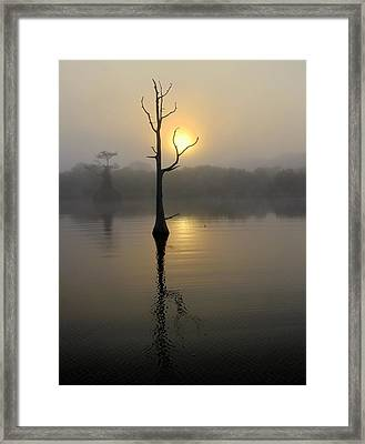 Foggy Morning Sunrise Framed Print